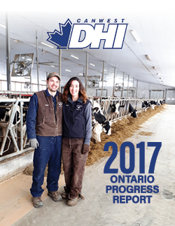 2017 DHI Ontario Progress Report